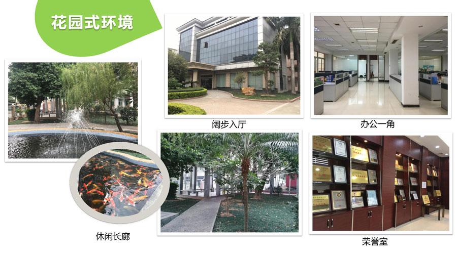 东莞市白天鹅纸业有限公司