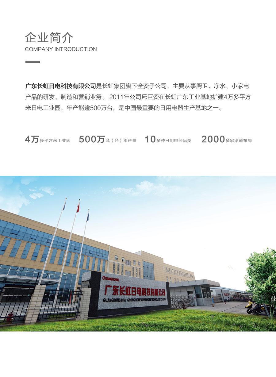 广东长虹日电科技有限公司