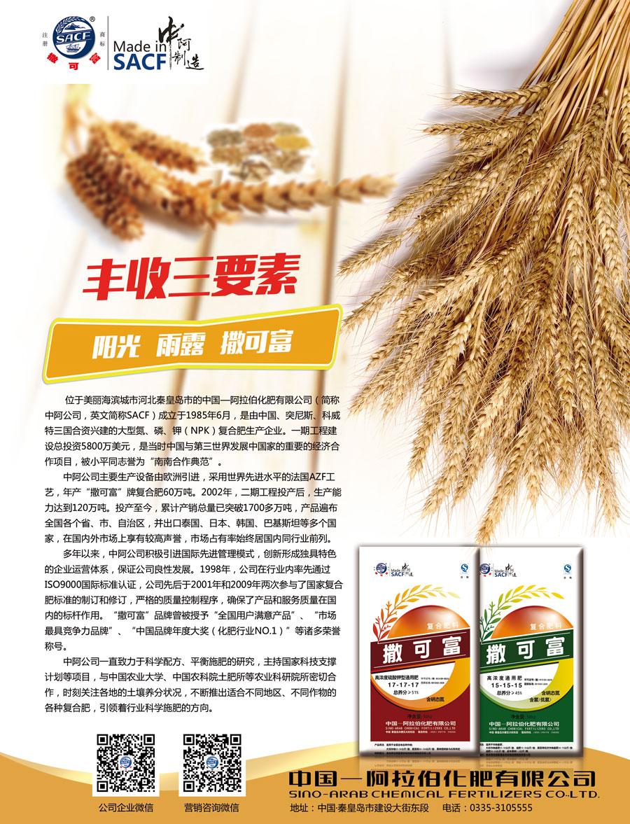 中国—阿拉伯化肥有限公司