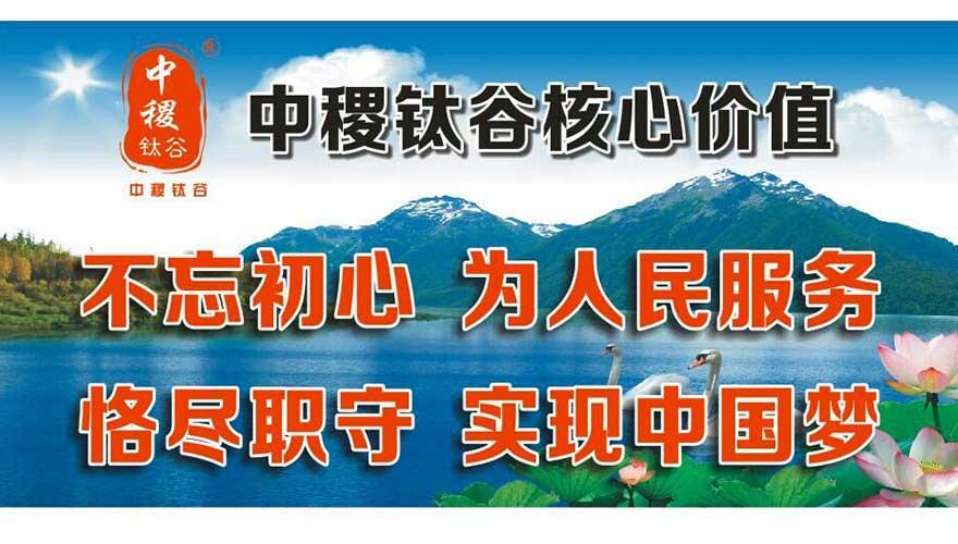 中稷钛谷科技(深圳)有限公司