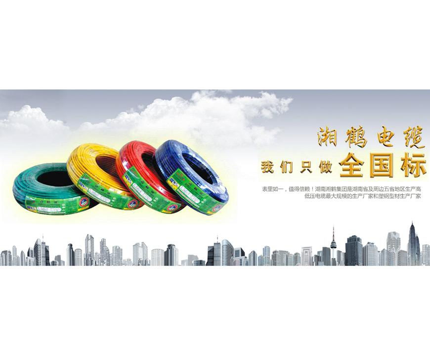 【湖南省】湖南湘鹤集团电缆科技股份有限公司——年