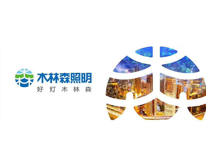 【广东省】木林森股份有限公司——2015年3·15产品图片