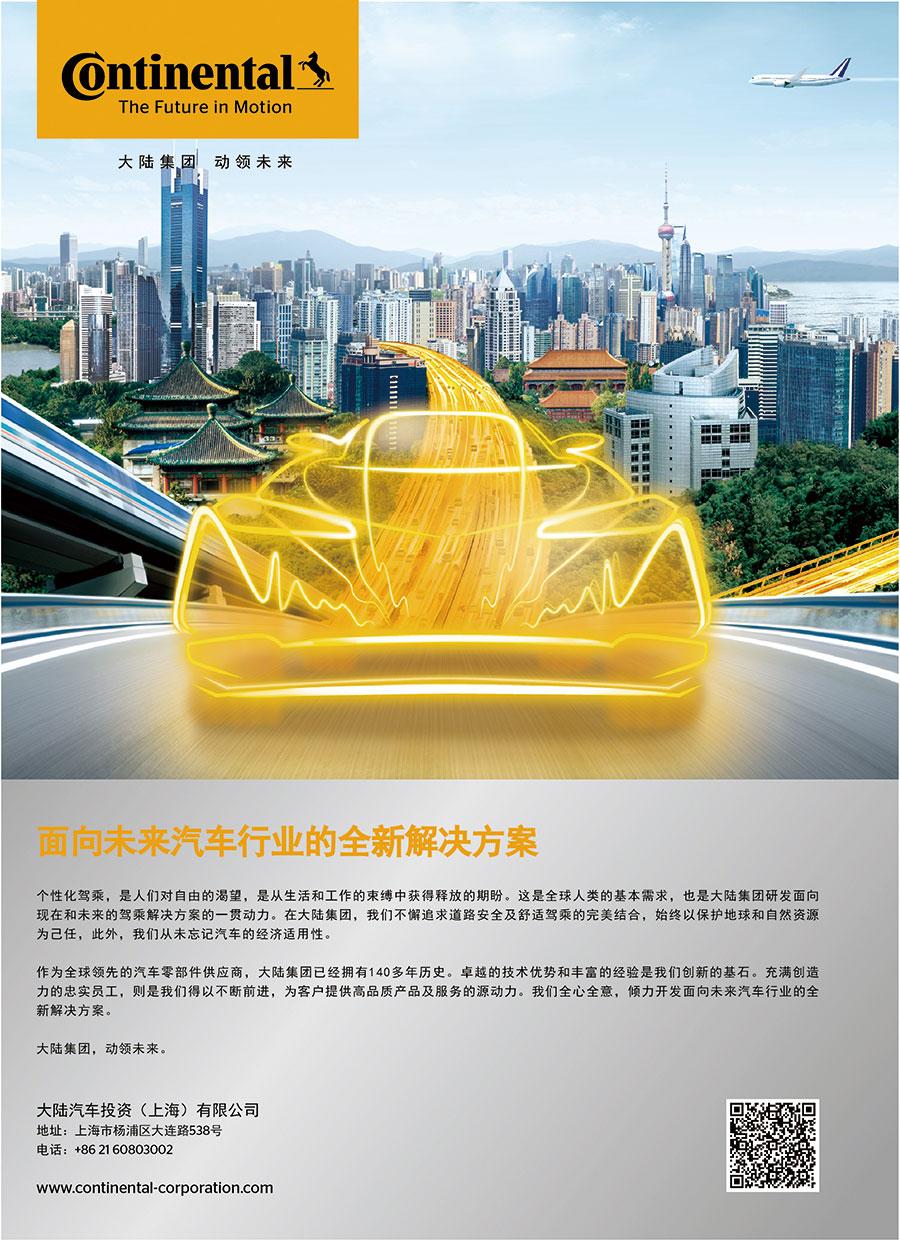大陆汽车投资(上海)有限公司